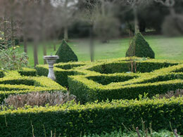 Selection and Review - Knot garden
